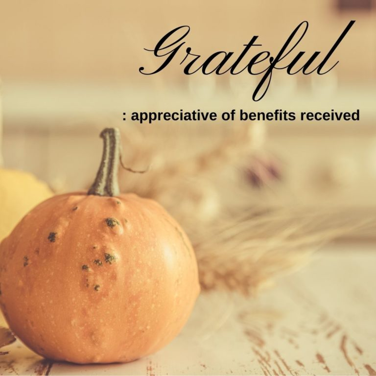 A pumpkin and the word grateful on the cover image of the Thanksgiving 2020 blog of Phebe Phillips