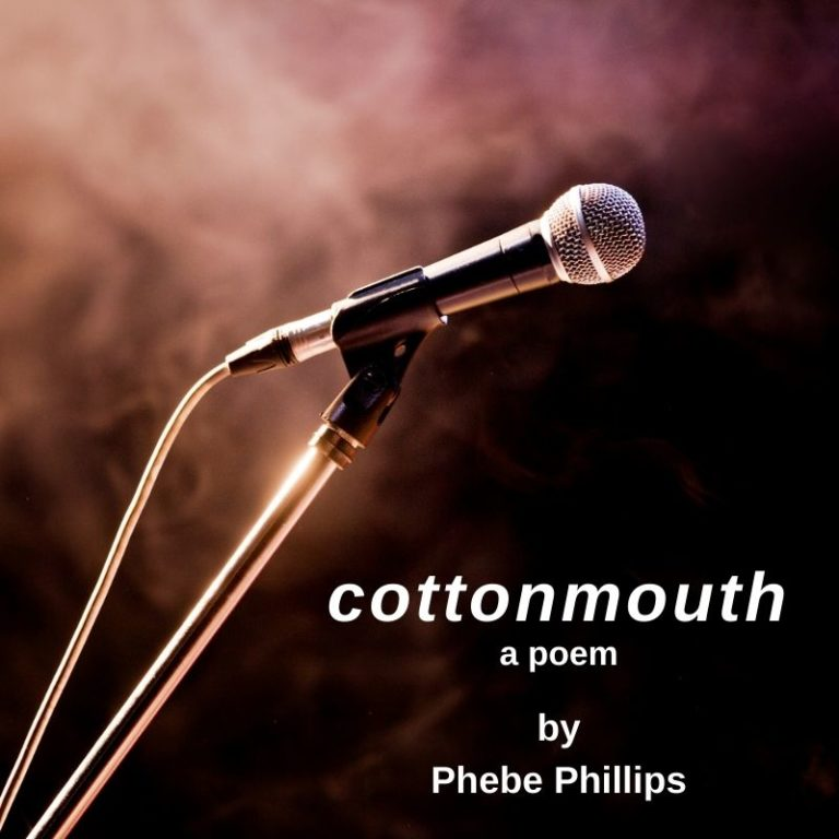 Photo for the blog post about the poem, cottonmouth